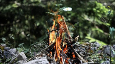 Photo of How to Get Campfire Smell Out of Clothes? [7 Simple Ways]