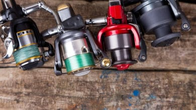 Photo of Different Types of Fishing Reels