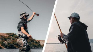 Photo of Fly Fishing vs Regular Fishing [What's the Difference?]