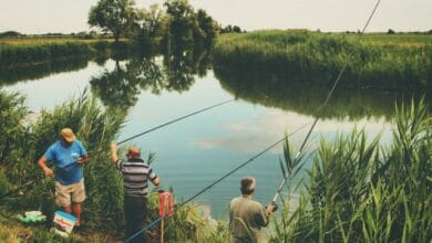 Photo of Pond Fishing: A Complete Guide On How To Fish a Pond