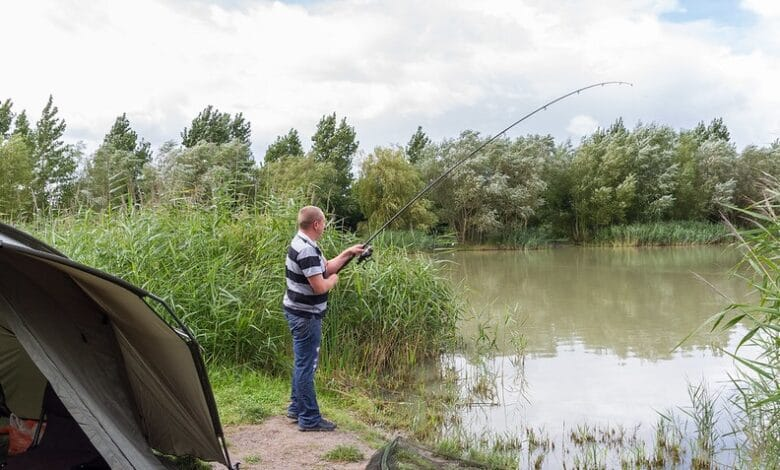 guy fishing a pond